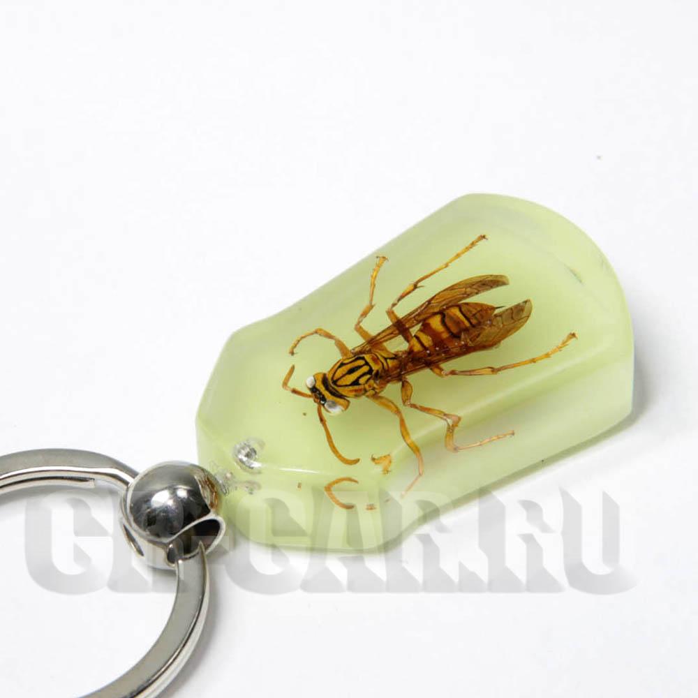 Брелки из насекомых